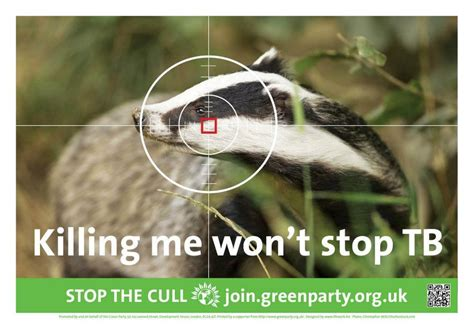 Badger Cull Petition by Support Brian May S Petition Against The Badger Cull