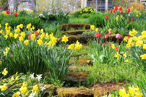 spring gardens aiken house gardens the winners and our spring garden