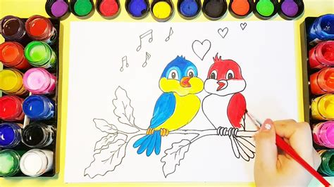 colorful drawings how to draw and colorful birds for learning colors
