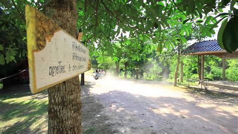 Pa Tedong golden monastery wat maa wat tham pa archa