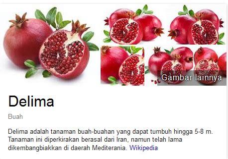 Pome Buah bahaya konsumsi buah pome delima pria nugraha