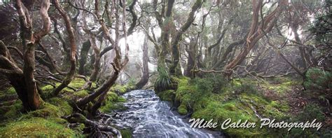 Find A Photographer by Home Find A Tasmanian Landscape Photographers Award