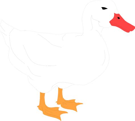 free clip stock photos duck free stock photo illustration of a white duck