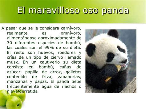 es un gnero con alrededor de 110 especies de la familia de las el maravilloso oso panda