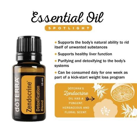 Cleanse And Detox Essential Oils Doterra by Spotlight On Zendocrine Essential Blend Detox