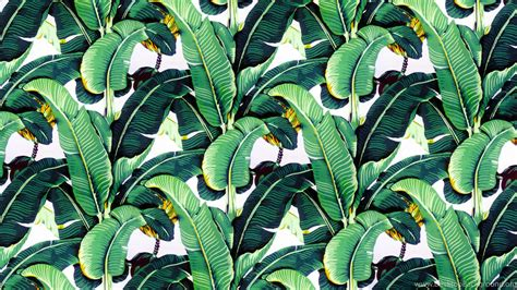 bananas leaf wallpaper banana leaf wallpapers design martinique for the beverly