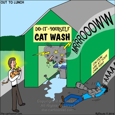 do it yourself wash do it yourself cat wash otl april 30 2014