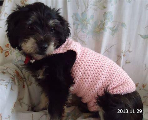 crochet patterns for dog coats free free dog sweater crochet pattern crochet for the doggies