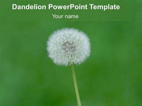 Free Dandelion Powerpoint Template Presentationmagazine Free Powerpoint