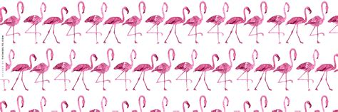 themes ltd tumblr pink flamingos twitter header