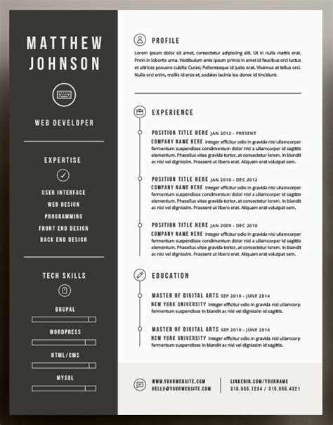 attractive resume templates beautiful resume templates health symptoms and cure