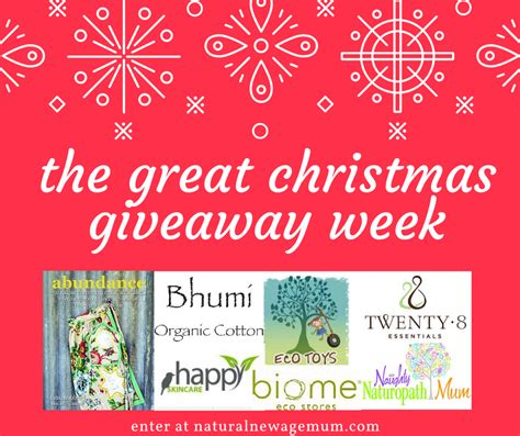 Great Christmas Giveaway - eco toys giveaway natural new age mum