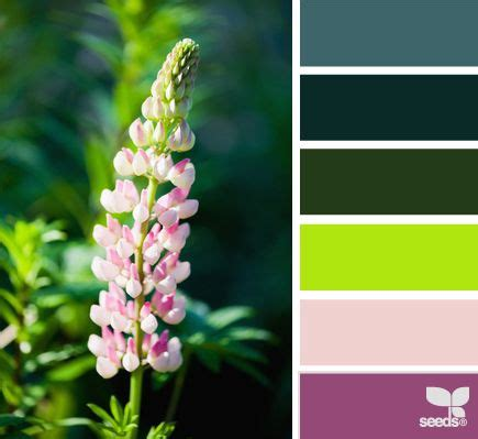 lupine color lupine color from design seeds colour schemes