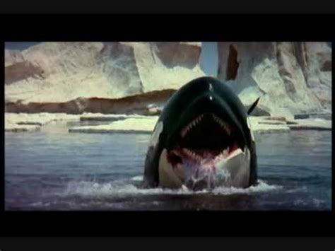 watch orca the killer whale 1977 full hd movie official trailer quot orca quot by ennio morricone youtube