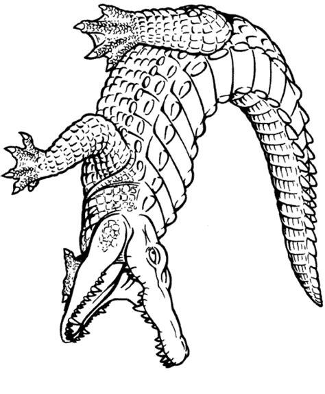 Coloriage 224 Imprimer Animaux Reptiles Crocodile Coloriage A Imprimer Animaux Reptiles Lezard Numero L