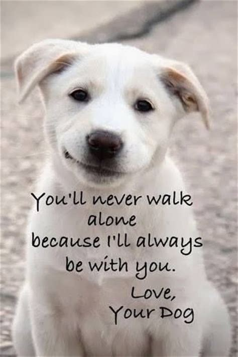 166 best images about quot you ll thank me one day quot said you ll never walk alone pictures photos and images