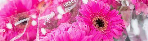 ingrosso fiori fiori recisi ingrosso ingrosso fiori con strass