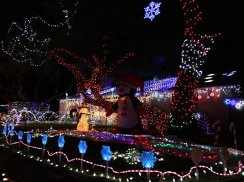 best christmas light displays where to see them fatherly