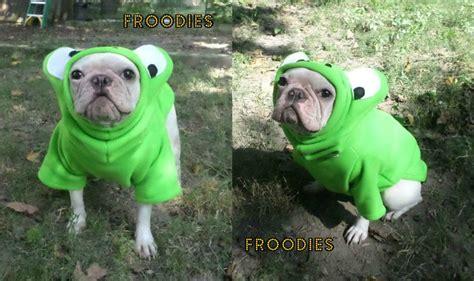 pug frog costume bulldog boston terrier pug froodies hoodies costume green