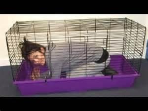 How To Make Rabbit Hutch Indoor Rabbit Cages Rabbit Cages Indoor Youtube