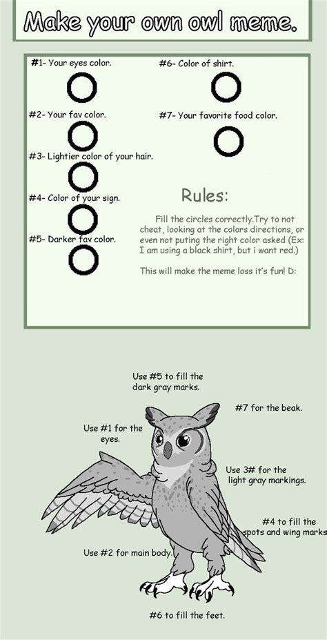 How To Draw An Owl Meme - make your own owl meme by catrynfaedragoness on deviantart