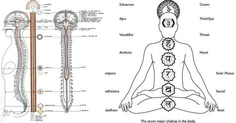 solar plexus location manipūra solar plexus chakra controlling your desires