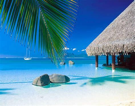 nach draußen französisch urlaub in franz 246 sisch polynesien 73 bilder zum inspirieren