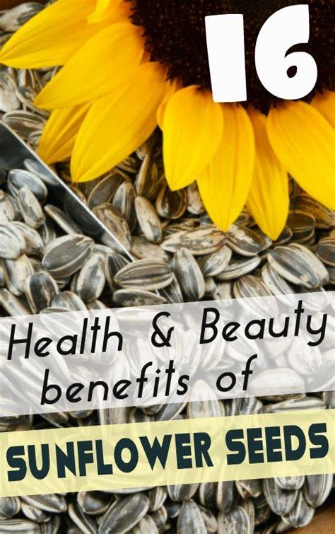 black sunflower seeds benefits sunflower is a beautiful flower and its plentiful seeds