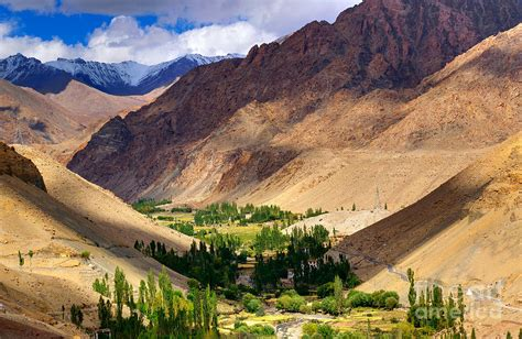 Landscape Pictures Of Kashmir Rocky Landscape Of Ladakh Green Valley Light And Shadow