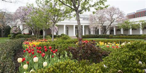 white house rose garden explore the white house rose garden through jackie kennedy onassis s eyes