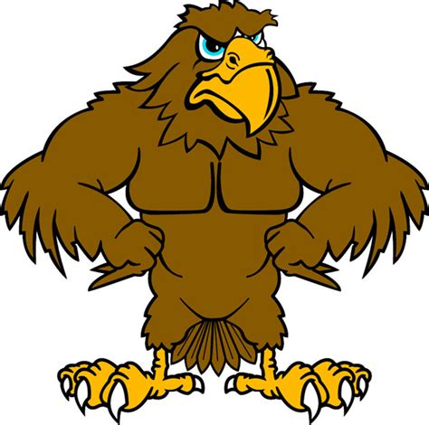 Hawk Mascot Clipart hawk mascot clip cliparts
