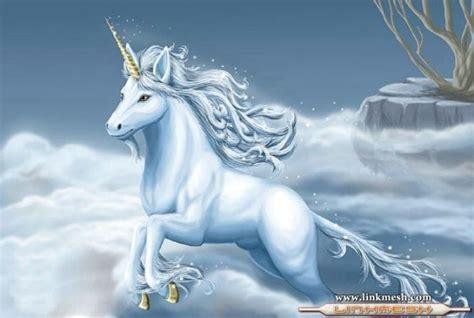 unicornios imagenes alas cuerno dorado unicornios