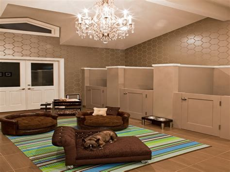 pet room ideas small craft rooms joy studio design gallery best design