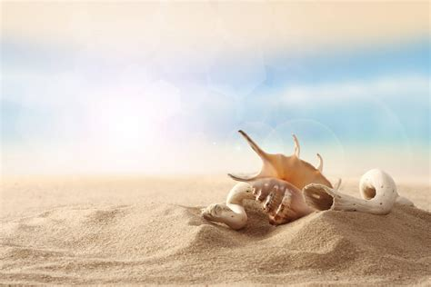 sand beaches sand beach wallpapers wallpaper cave