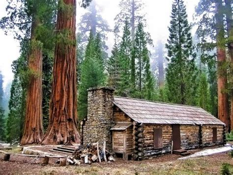 cabin yosemite national park and logs on