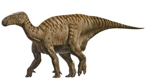 iguanodon sauropedia