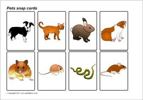 printable animal snap cards pets snap cards sb4583 sparklebox huisdieren