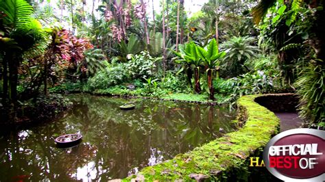 Hawaii Tropical Botanical Garden by Hawaii Tropical Botanical Garden Best Botanical Garden