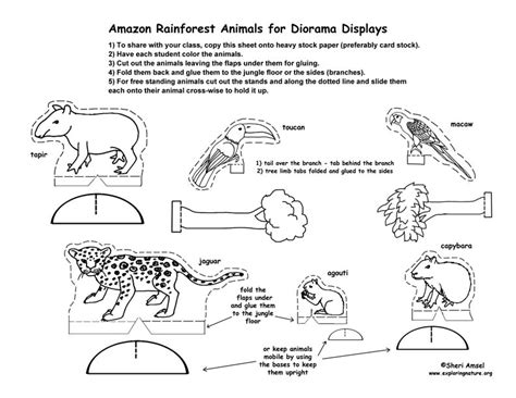 rainforest animal templates best photos of rainforest printable shoebox cut outs