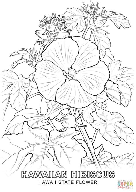 click the hawaii state flower coloring pages hibiscus