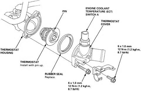 1997 Honda Accord Water Location Scion 2005 Thermostat Location Get Free Image About