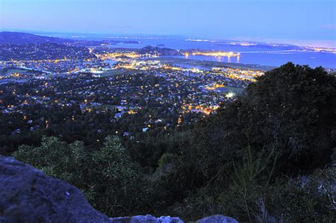 ponzi christmas trees marin how marin county gets 75 percent of its power from renewables venturebeat