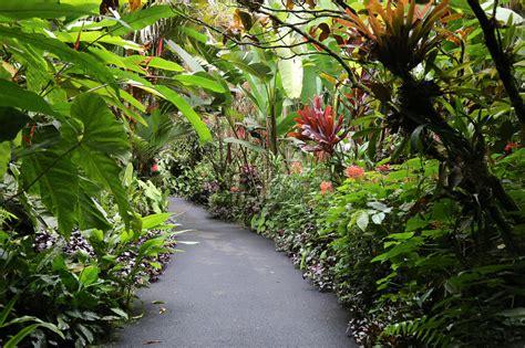 hawaiian tropical garden tour tilly s nest
