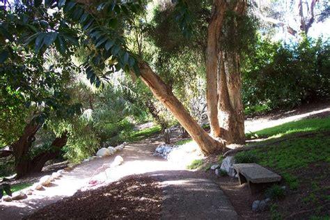 Morton Botanical Garden Mathias Botanical Garden Ucla S Mildred E Mathias Botanical Garden Gets 5 Million From Morton