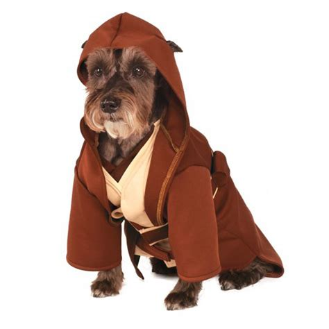 can i take my puppy out after second vaccination wars jedi robe costume with same day shipping baxterboo