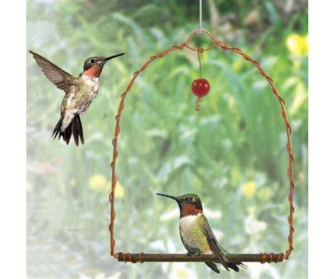 bird houses by mark hummingbird swing