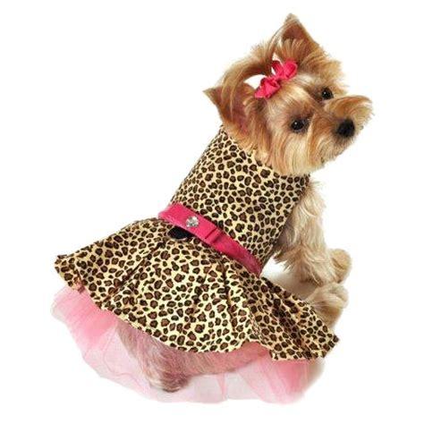 Dress Tutu Leopard fierce leopard tutu dress at glamourmutt