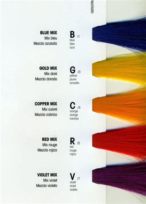 lanza hair color chart 36 best images about l anza healing color on