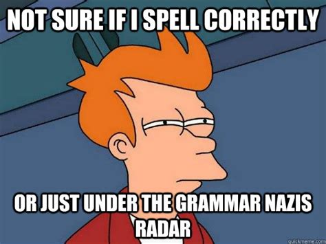 Not Sure If Fry Meme - not sure if i spell correctly or just under the grammar