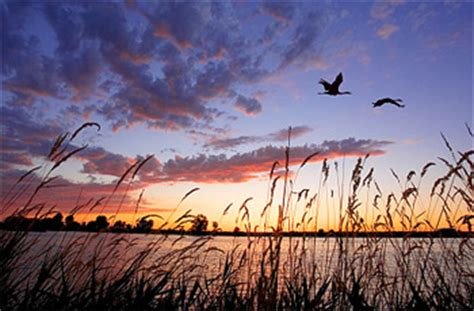 man killed in duck hunting accident in hubbard county